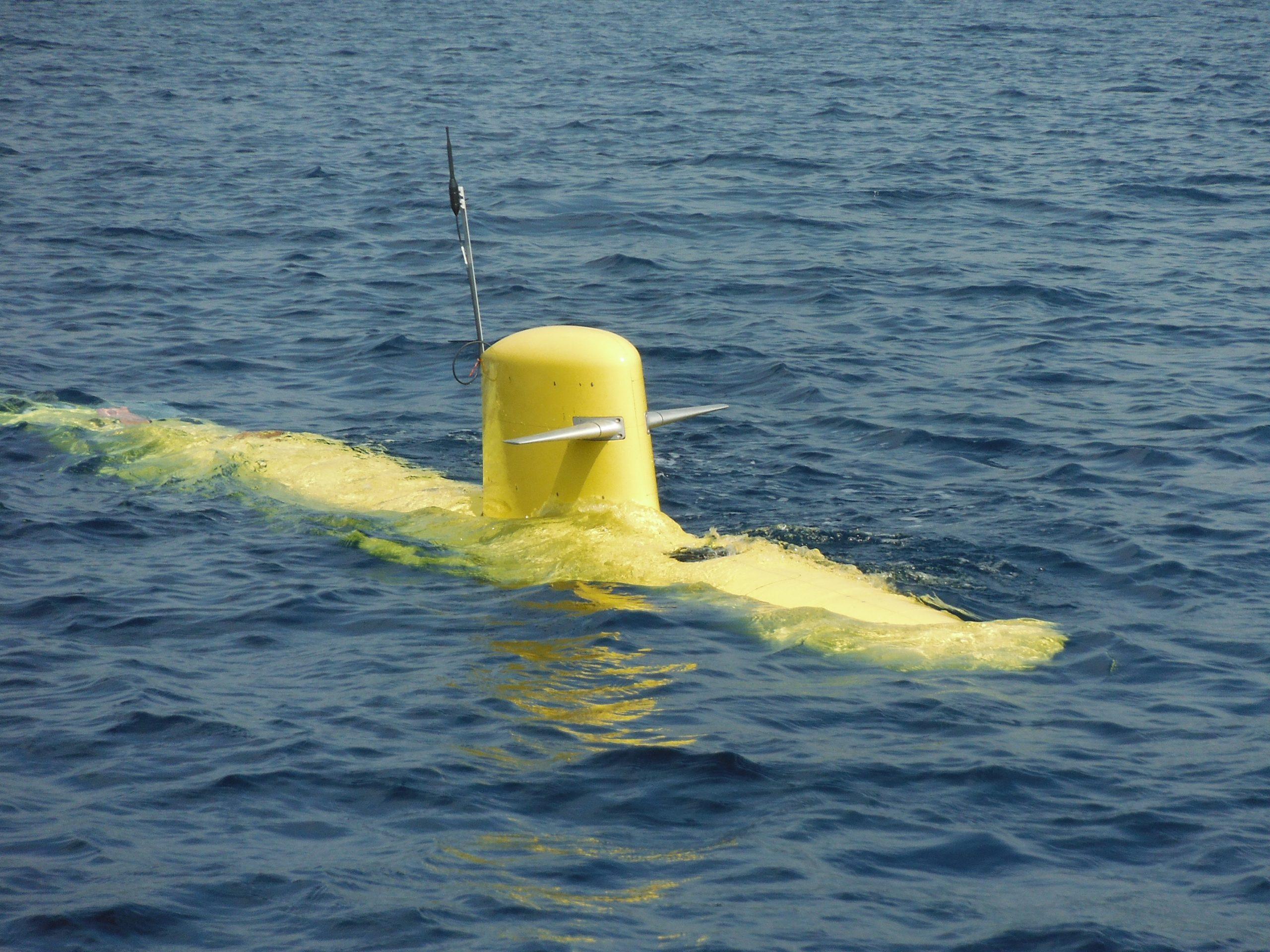 5- Max sea trial